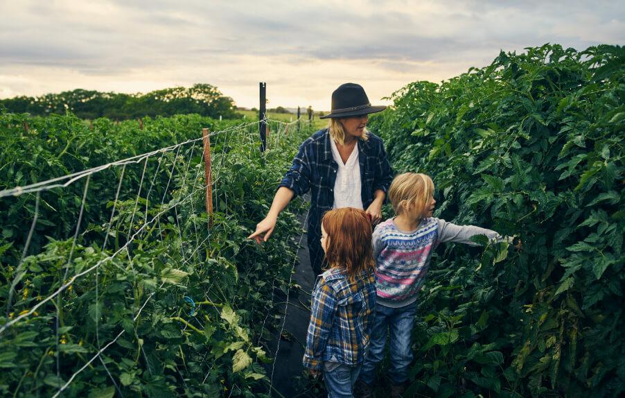 Australian family maintaining their produce on the farm