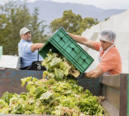 Ministers Media Release - Food Waste